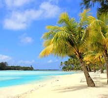 Bora Bora Island Beach by Honor Kyne