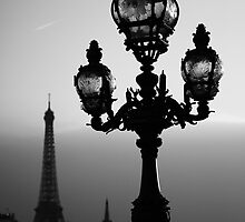 A Street light and the Eiffel Tower, Bridge Alexander 3, Paris, France by remos