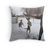 Buster and Sweetie Playing with dad and the snow~  Throw Pillow