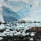 Ice Portrait by John Dalkin