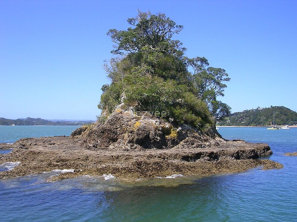 An Island in the Bay of Islands by lezvee