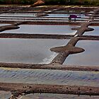 The Marais Salants de Guerande Brittany France by Buckwhite