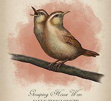 Gossiping House Wren by Howard Dale