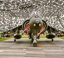 Harrier GR.7 ZD407 hiding by Colin Smedley