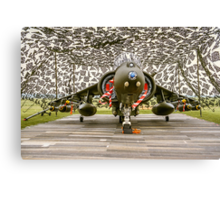 Harrier GR.7 ZD407 hiding Canvas Print