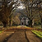 Muckross House Alley At Sunset by youngoggo