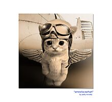 "CATS IN HATS ""AMEWLIA EARHART"" Photographic Print"