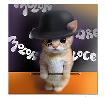 "CATS IN HATS ""Saucer of Milkbar"" by Patty McNally"