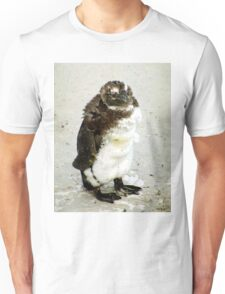 Baby South African Penguin Moulting Unisex T-Shirt