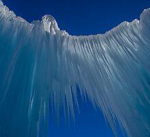 Angel Wings  by Nicole  Markmann Nelson