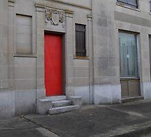 The Red Door  by WildestArt