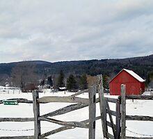 Cobble Mountain Barn No. 1 by Geoffrey Coelho