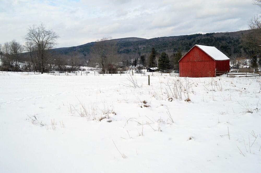 Cobble Mountain Barn No. 2 by Geoffrey Coelho
