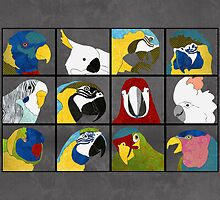 Parrots by Janet Carlson