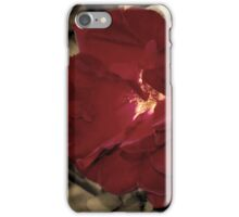 Color of Love iPhone Case/Skin