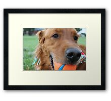 A Happy Ganzo Framed Print