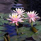 Denver Botanic Gardens 9-4-13 by Bernie Garland