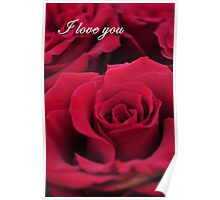 Red Roses - I Love You Poster