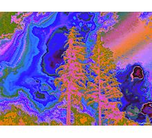 Winterland 21 Digital Image Photographic Print