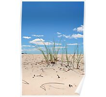 Sand Grass at Sisters Beach Poster