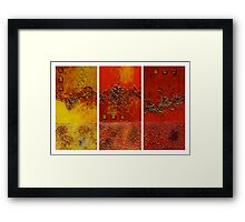 Path of Discovery Framed Print