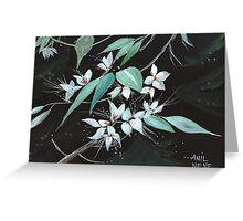 Flowers N Petals Greeting Card