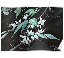 Flowers N Petals Poster