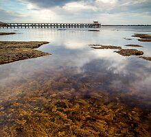 Tidal Pool by Rodger Parker