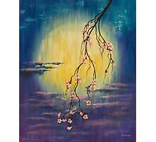 Full moon sakura Photographic Print