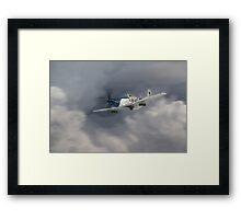Petie 352nd Fighter Group Framed Print