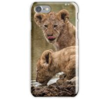 Lion Cubs iPhone Case/Skin