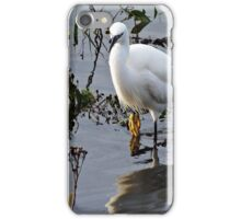 """ That Darn Duck moving the fish"" iPhone Case/Skin"