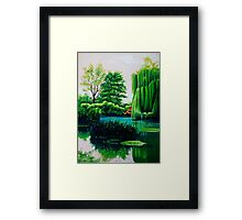 Breathtaking swamp Framed Print