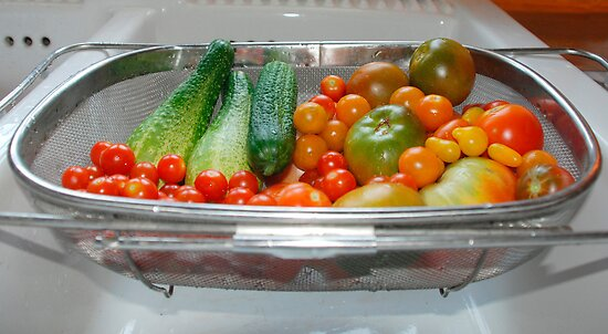 Tomato and Cucumber Harvest in Kitchen Sink by jojobob