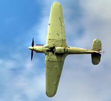 Hurricane LF363 (Mk IIc) by larry flewers