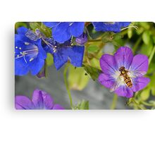 Hoverfly and Flowers Canvas Print