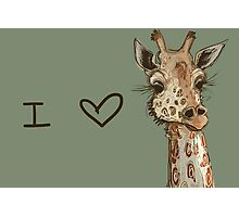 Lovely Lashes Giraffe Photographic Print