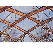 That great glass ceiling. Photographic Print