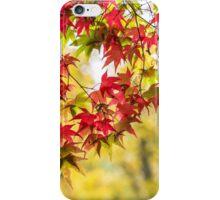 The prettiest autumn curtain iPhone Case/Skin