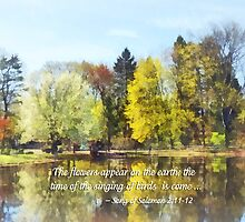 Solomon 2 11-12 -  The flowers appear  by Susan Savad
