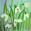 Snow drops by maggie326