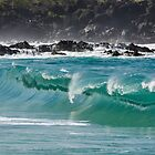 Waimea Bay Shorebreak by Tammy Ascher