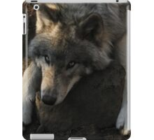 Hard pillow iPad Case/Skin