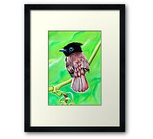 Tropical Bird Framed Print