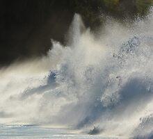 Big Shorebreak by Tammy Ascher