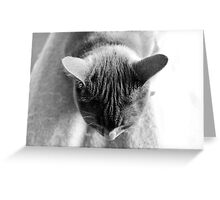 Head Strong Greeting Card