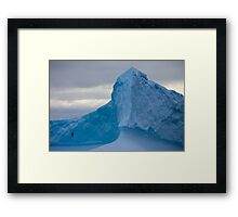 Ice Bird Framed Print