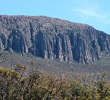 The Organ Pipes, Mount Wellington, Hobart by Trish Meyer