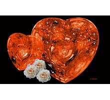 Red Hearts and White Roses Photographic Print