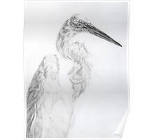 Egret Profile Poster